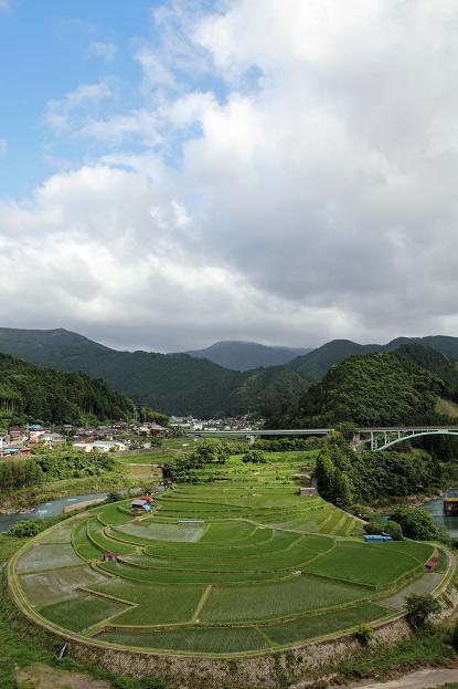 2011.06.24・『 あらぎ島 』 和歌山県 有田郡清水町 06