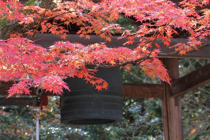 2011.12.05・『 金閣寺 』京都 07