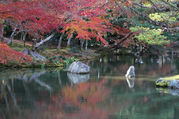 2011.12.05・『 金閣寺 』京都 09