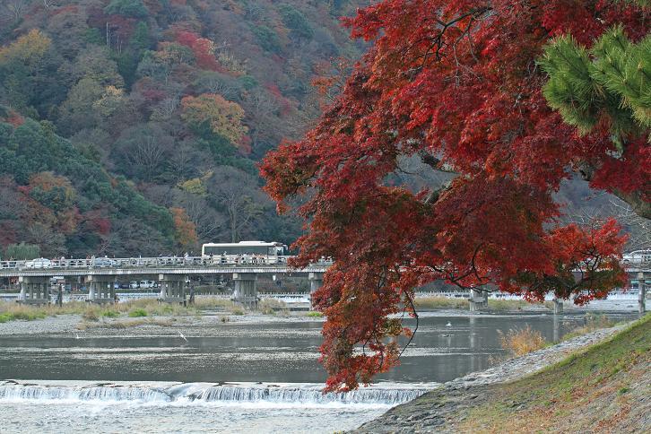 2011.12.05・『 渡月橋 』京都 06