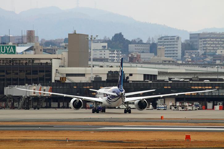 2012.01.27・『 大阪国際空港(伊丹空港)・787 』 兵庫県 伊丹 02