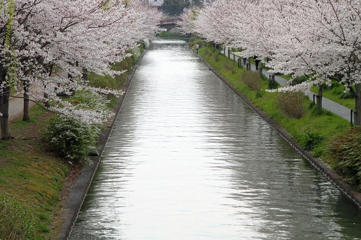 2012.04.09・『 寺田屋 』 京都府 京都市 伏見区 03