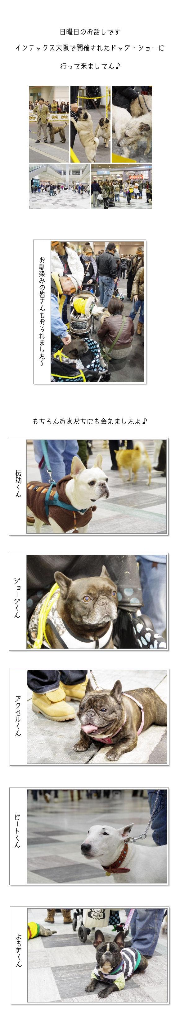 インテックス大阪♪