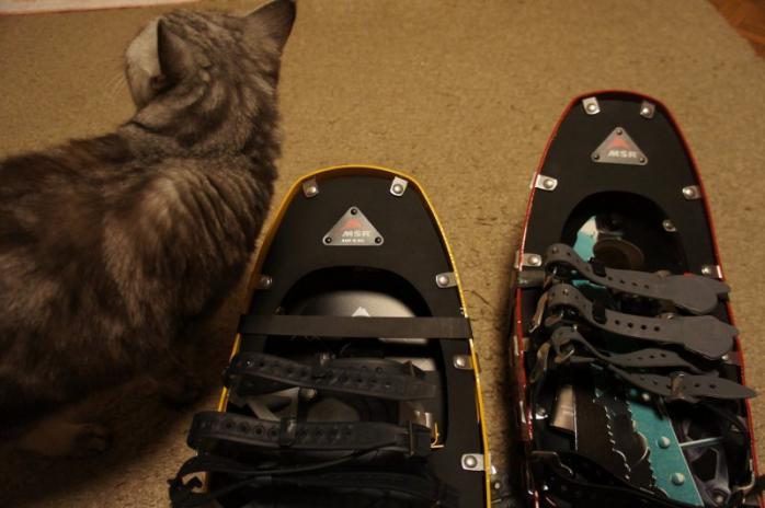 Snowshoes006.jpg
