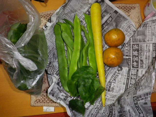 珍しい野菜