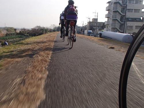 早朝サイクリング (15)