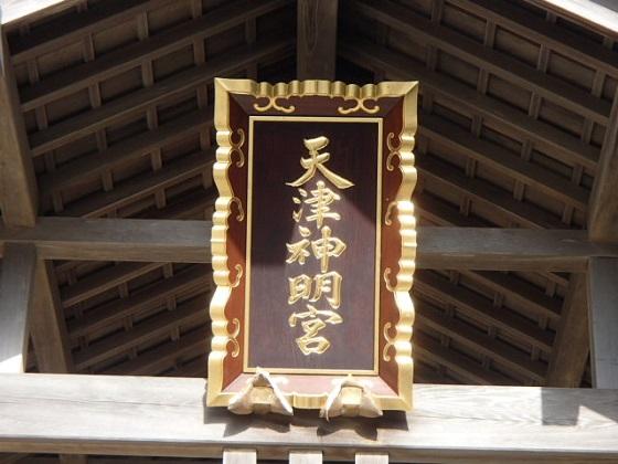 天津初詣 (2)
