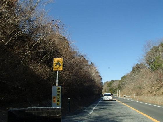 旅行帰り (7)