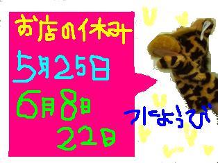 2_20110523145611.jpg