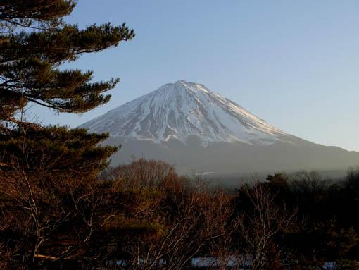 Fuji2014.jpg
