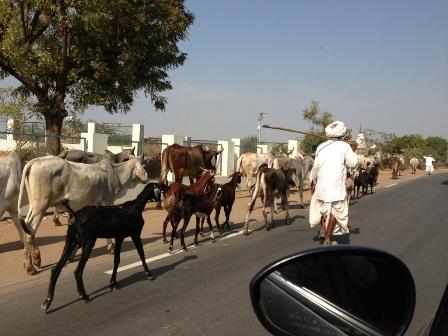 インド式交通渋滞