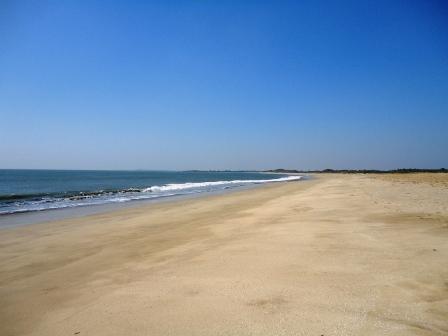 ゴンティマタビーチ