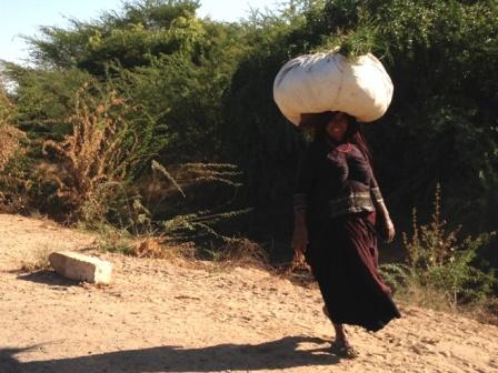 ラバリ族の婦人2