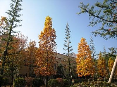 関西学院大学三田キャンパス