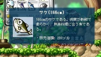 166cm鮭笑