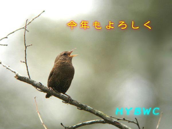 20110101  IMG_0175j