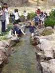 20100504nobu魚とり