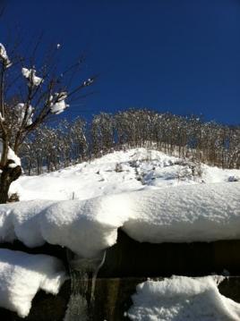 20110108雪山