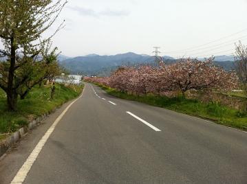 20110506CAAD10新コース