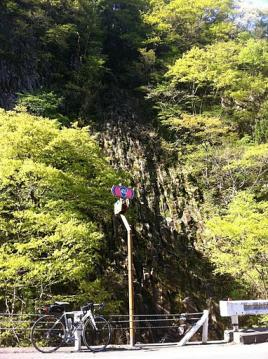 20110515CAAD10樽滝