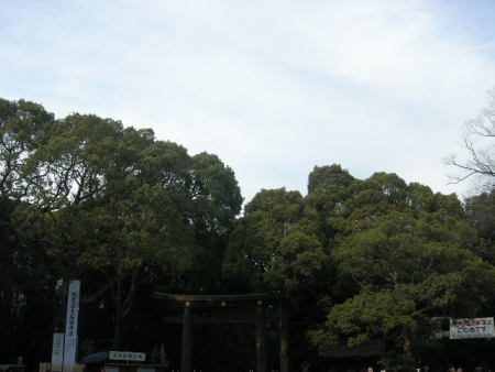 ネタタタタタ (3)