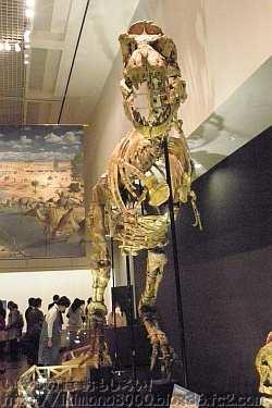 サウロロフスの向かいのタルボサウルス「発掘! モンゴル恐竜化石展」