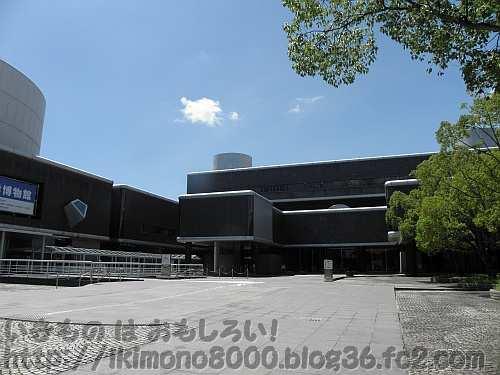 万博記念公園にある国立民族学博物館