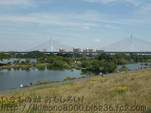 多くの釣人がいる淀川の城北ワンド