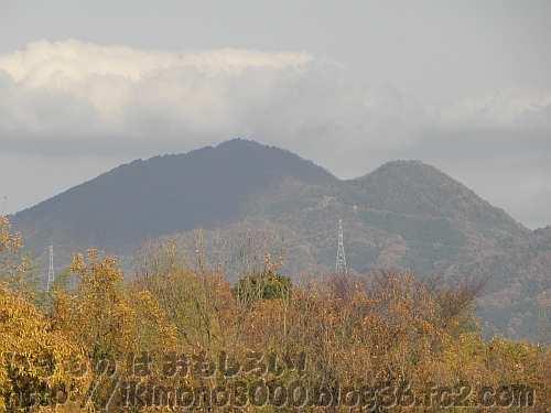錦織公園から見た二上山