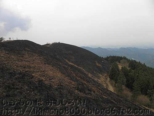 真っ黒になった岩湧山山頂