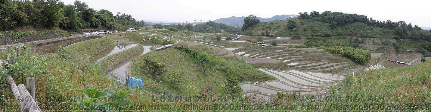 まわりが丘で囲まれている下赤阪の棚田