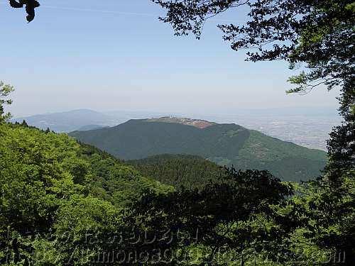 金剛山葛木神社裏参道から見たツツジの花の季節の葛城山