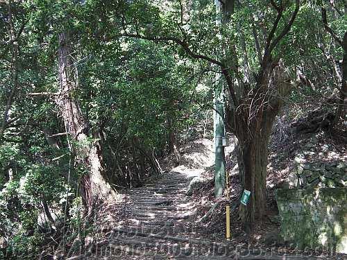 愛宕山の表参道