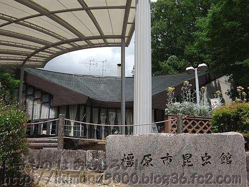奥にズド~ンと広がる橿原市昆虫館