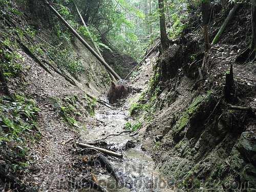 深い谷の妙見谷道