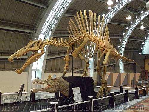 入り口前の大きなスピノサウルス