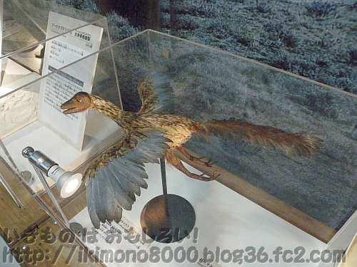鳥というよりトカゲのアーケオプテリクスの生態モデル