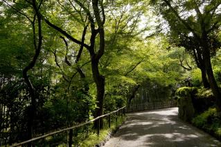 130515oyamazakivilla005.jpg