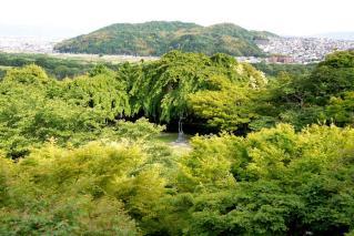 130515oyamazakivilla026.jpg