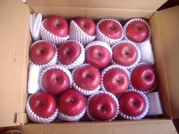 花田りんご2