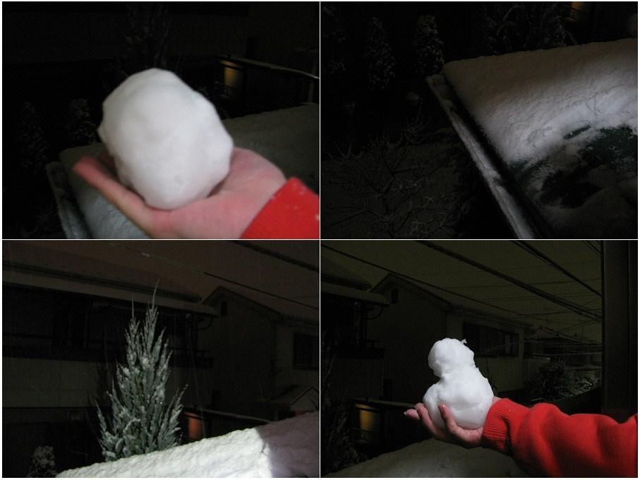 _20110214夜、雪積もってるぅ~!!