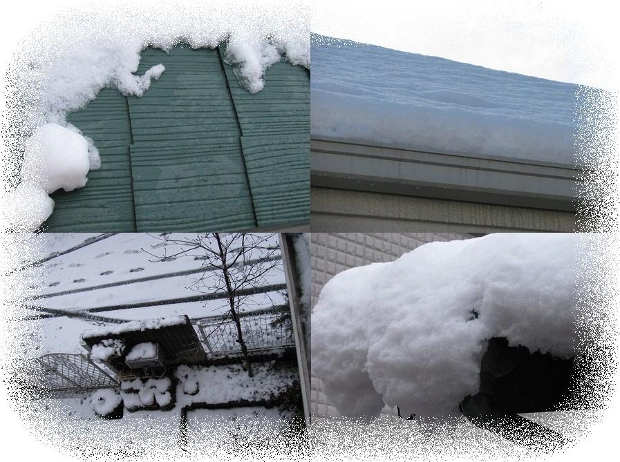 _20110215積雪