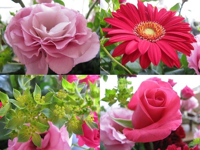 20110430結婚記念日の花たち