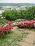 五大尊つつじ公園20110506A