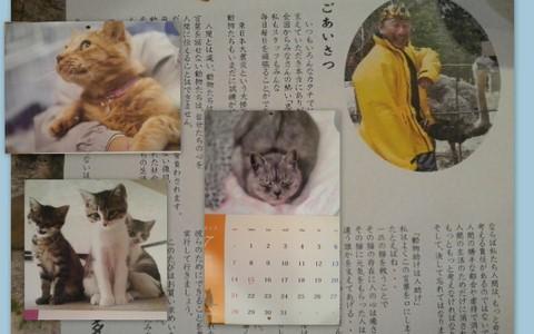 2013-01-15-1830-38.jpg