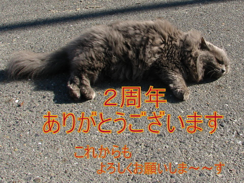 IMG_8590.jpg