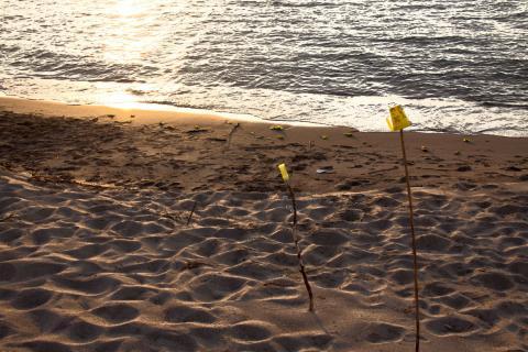 2011 砂浜 夕焼け 9