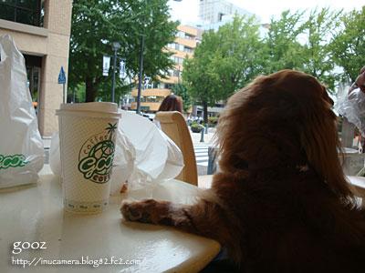 cafe_042_05.jpg