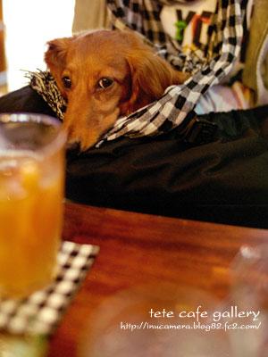 cafe_92_5.jpg