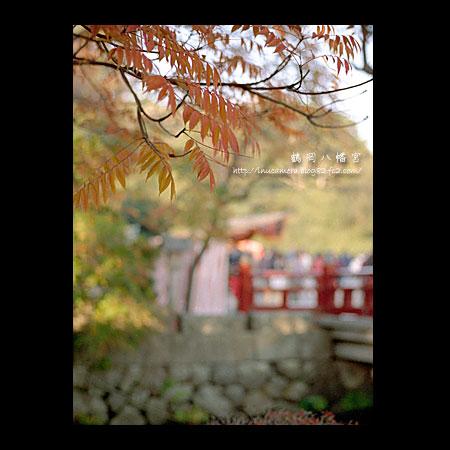 walks_031_02.jpg
